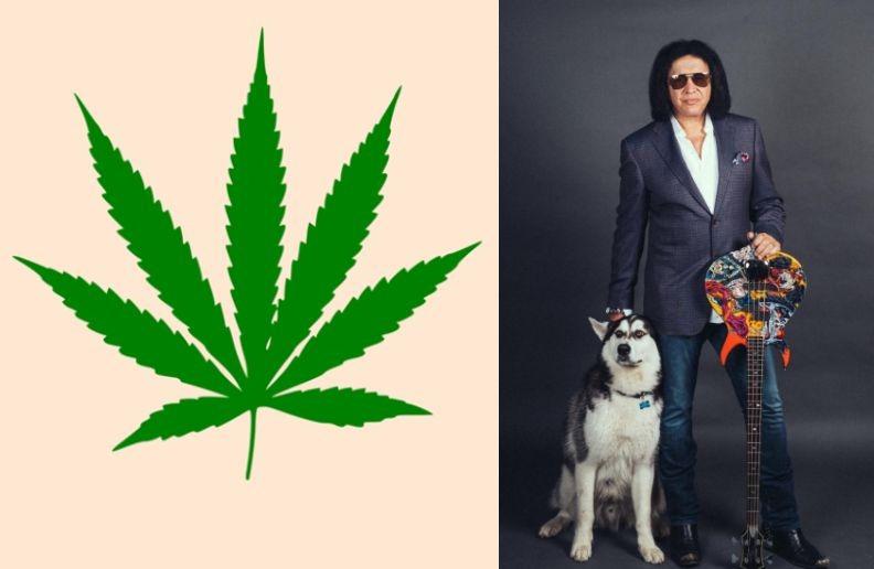 Weed Gene Simmons