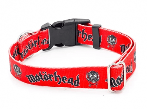 Motorhead dog collar