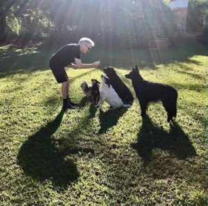Wayne Hussey dogs