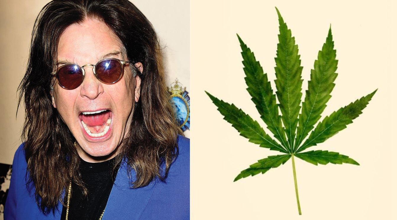 Ozzy weed
